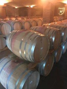 cape winelands one-day itinerary