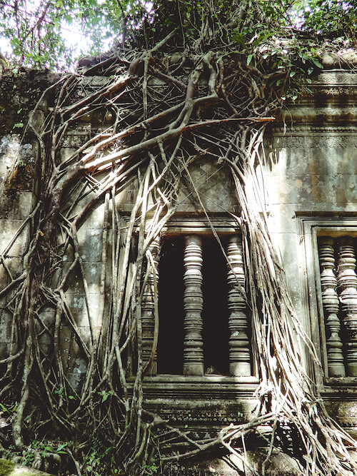 Beng Mealea Temple with tree roots growing over window