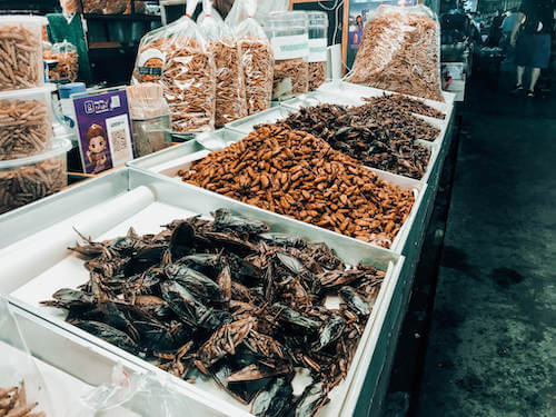 Bugs at a Chiang Mai market
