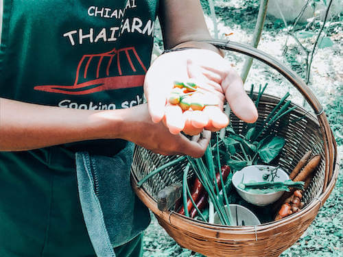 Inspecting veggies at Thai Farm Cooking School