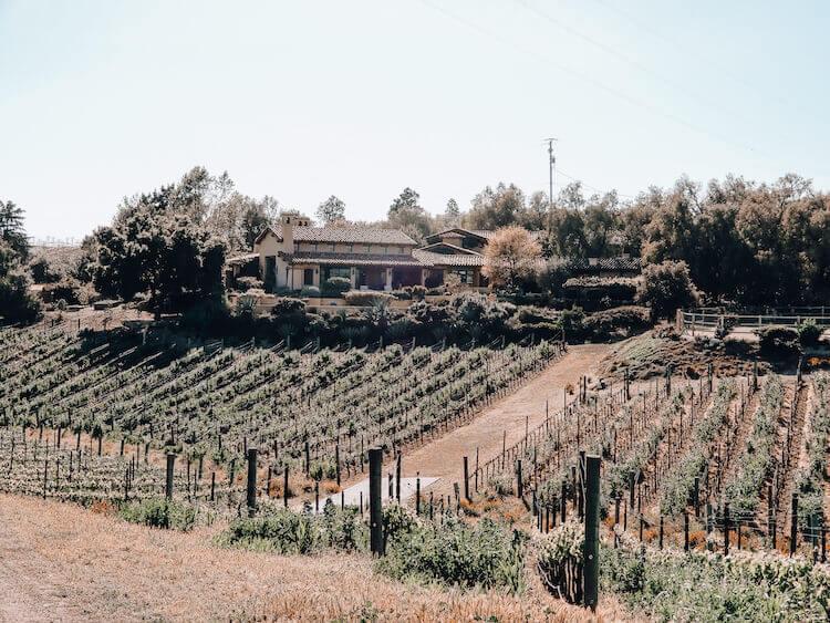Eleven Oaks at Carhartt Family Vineyard