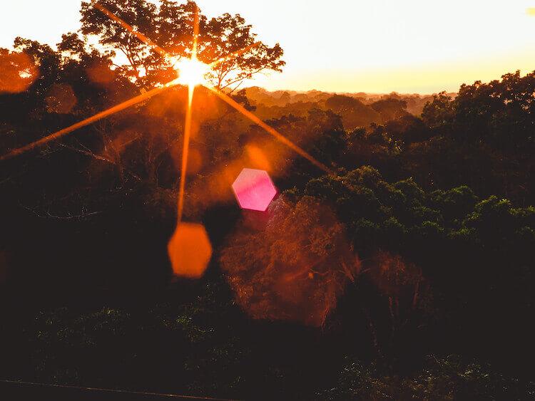 Sunrise over the Amazon Rainforest canopy at Refugio Amazonas