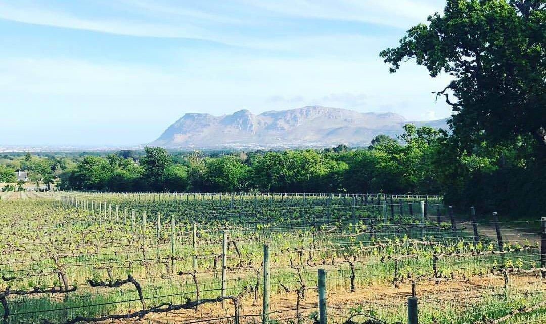 The Perfect South Africa Honeymoon Itinerary For The Most Romantic 2 Weeks in South Africa