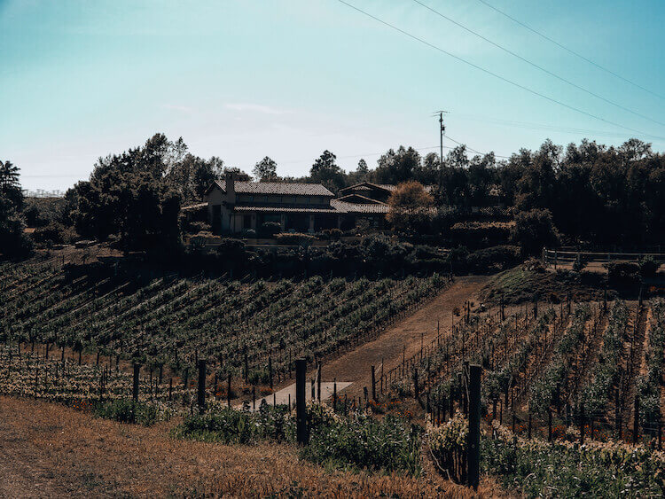 The house on Carhartt Vineyards you can rent