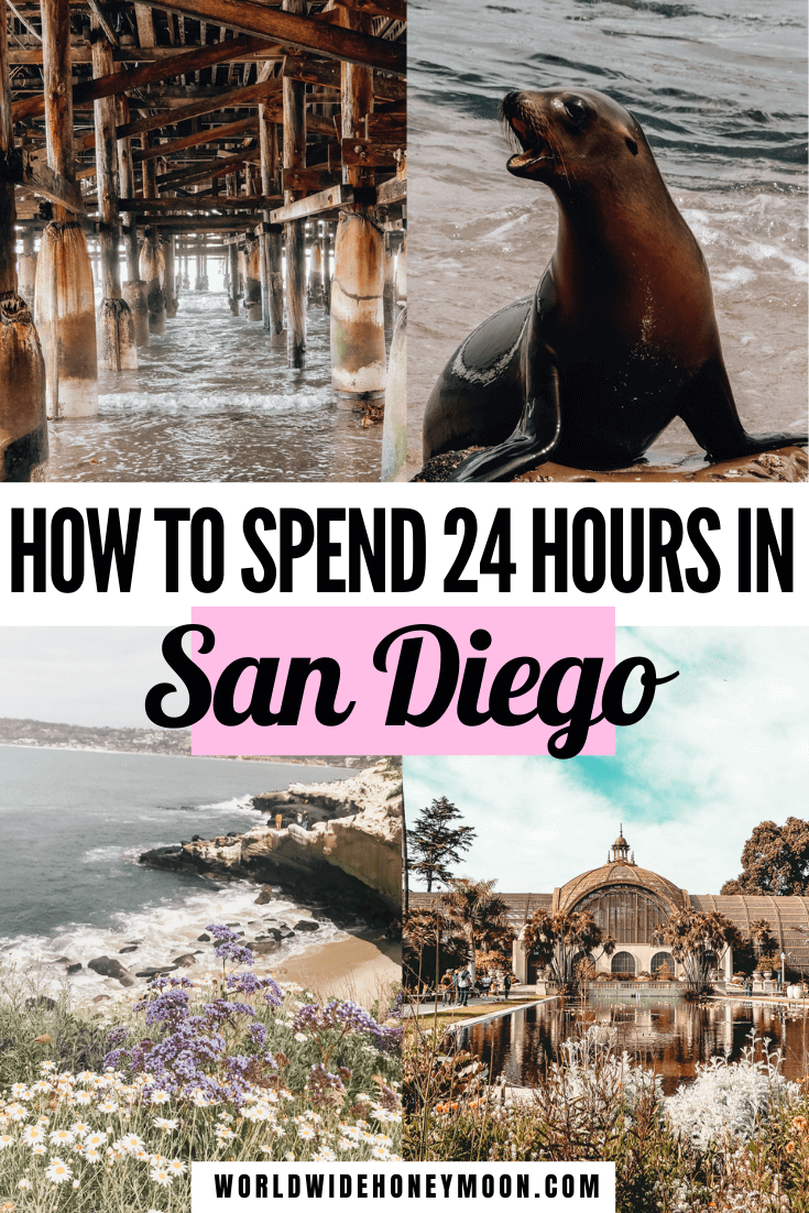 This is how to spend 24 hours in San Diego | 1 Day in San Diego | San Diego 1 Day | San Diego 1 Day Itinerary | San Diego Things to do in 1 Day | Things to do in San Diego | San Diego California | San Diego Honeymoon | San Diego Food Restaurants | San Diego Attractions | Balboa Park San Diego | La Jolla San Diego | Downtown San Diego Things to do in | San Diego Itinerary | US Destinations | North America Destinations