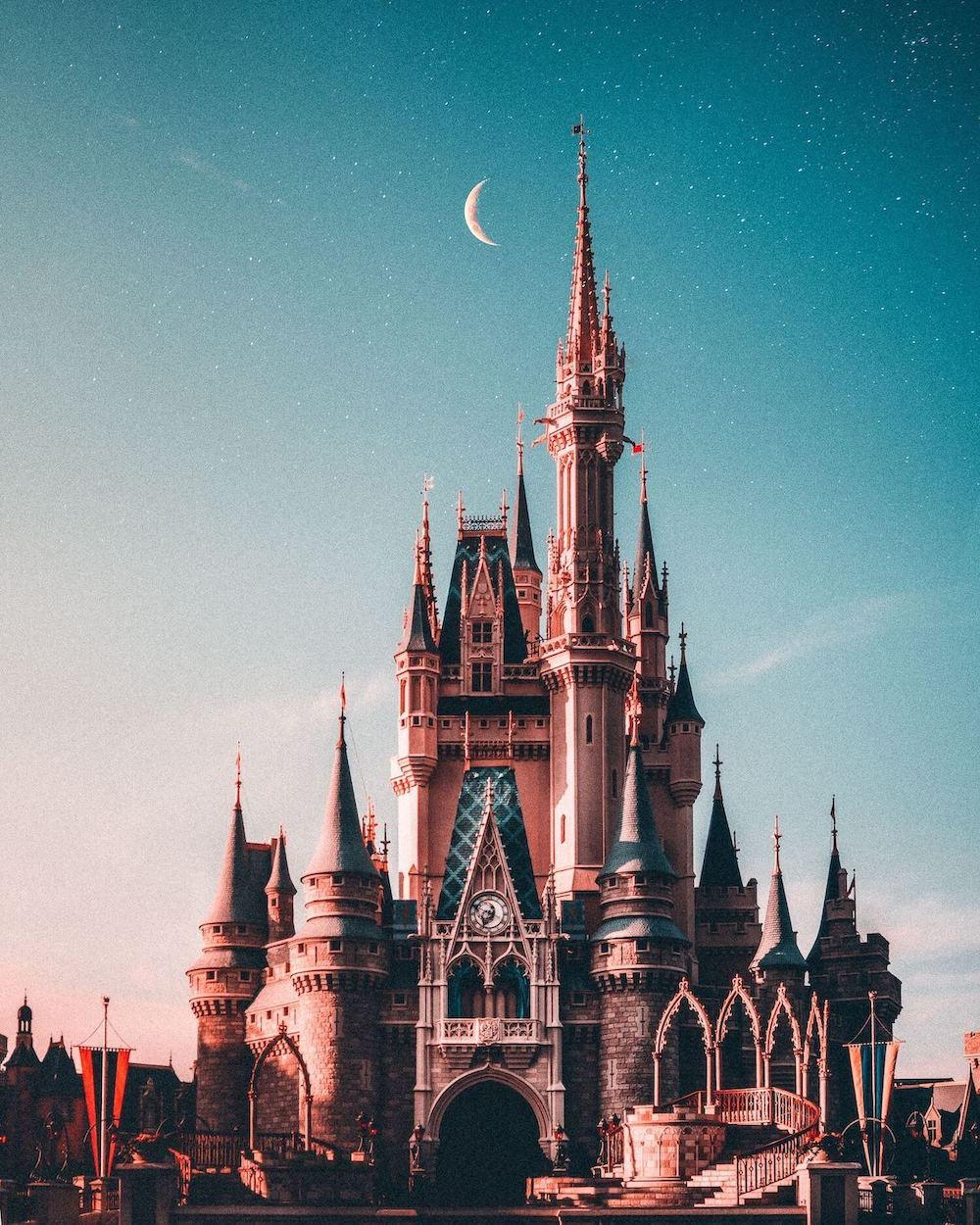 Disney World castle under the stars