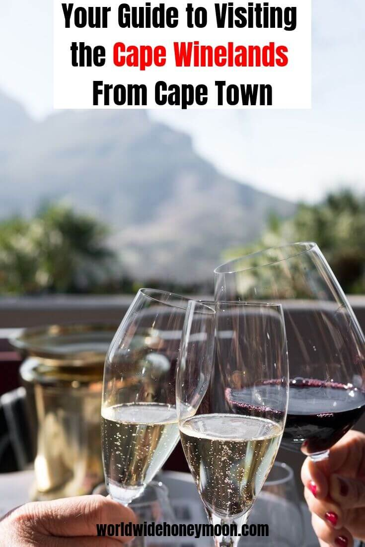 Your Guide to Visiting the Cape Winelands from Cape Town