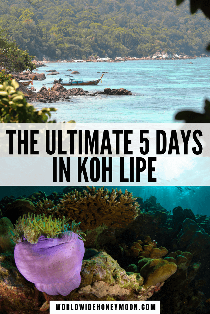 This is the ultimate 5 days in Koh Lipe Itinerary | Koh Lipe Thailand | Koh Lipe Beach | Koh Lipe Photography | Koh Lipe Thailand Photos | Thailand Beaches Resort | Thailand Honeymoon Bungalows | Thailand Honeymoon Itinerary | Thailand Honeymoon Resorts | Best Beaches in Koh Lipe | Things to do in Koh Lipe Thailand | Most Romantic Places in Thailand | Where to Travel in Thailand | Thailand Destinations | Southeast Asia Destinations