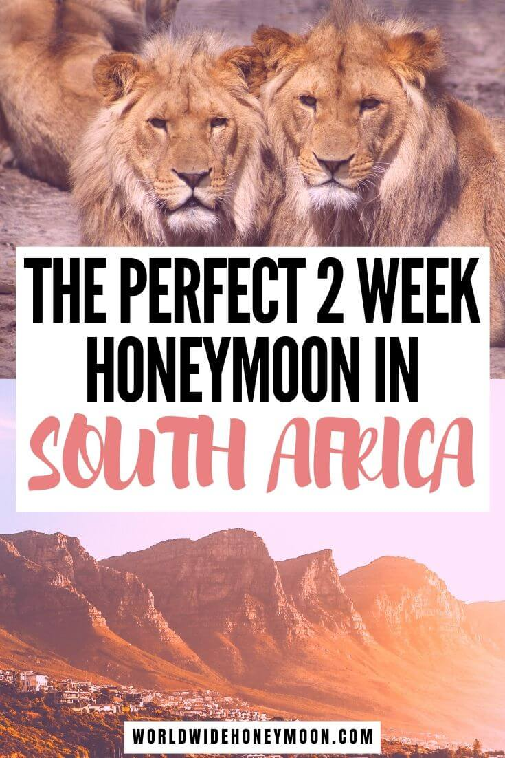 The Perfect 2 Week South Africa Honeymoon Itinerary