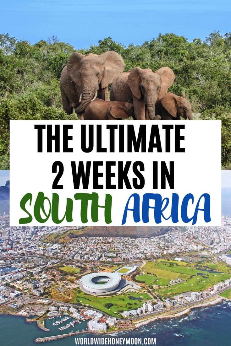 South Africa itinerary for 2 weeks| The Ultimate 2 Weeks in South Africa - South Africa Honeymoon - South Africa Safari - South Africa Travel Inspiration - South Africa Photography - Kruger National Park South Africa