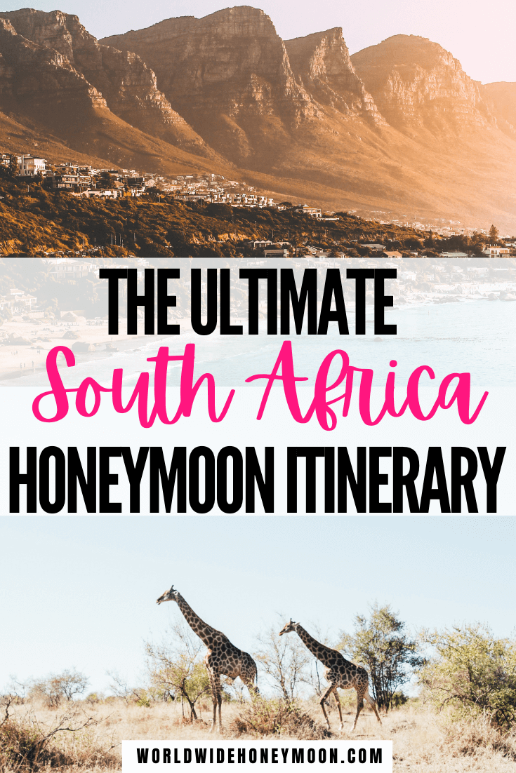 The Ultimate 2 Weeks in South Africa | South Africa Honeymoon Itinerary | South Africa Safari | South Africa Travel Inspiration | South Africa Photography | Kruger National Park South Africa | Cape Town South Africa | Johannesburg South Africa | South Africa Itinerary | South Africa 2 Week Itinerary | South Africa Itinerary | 14 Days in South Africa