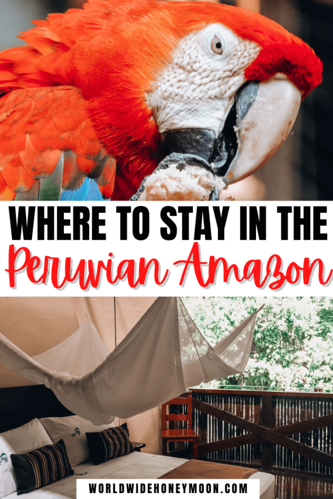 Where to Stay in the Peruvian Amazon
