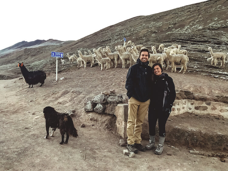 Kat and Chris with a herd of alpaca at the start of the trail for Rainbow Mountain