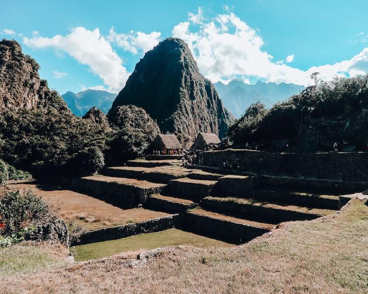Machu Picchu plus agricultural terraces