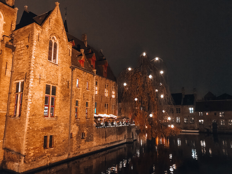 Bruges at night with a tree covered in lights hanging over the canal