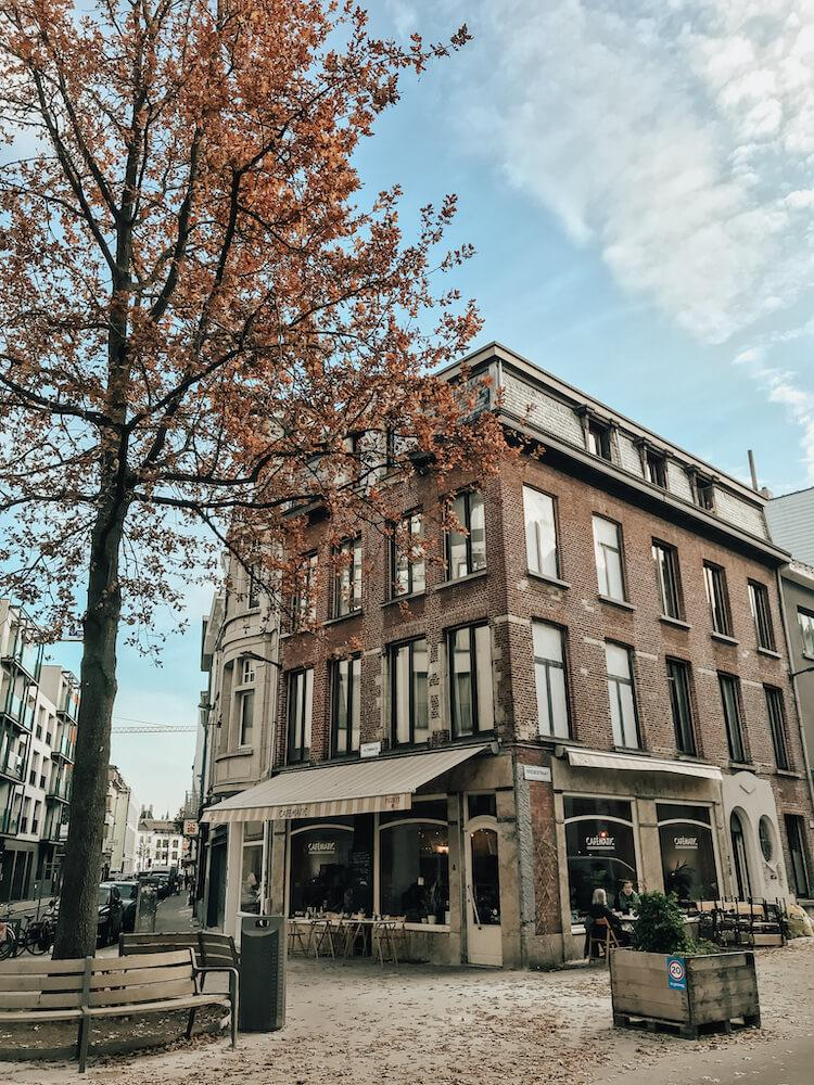 Beautiful fall colors in Antwerp in one day