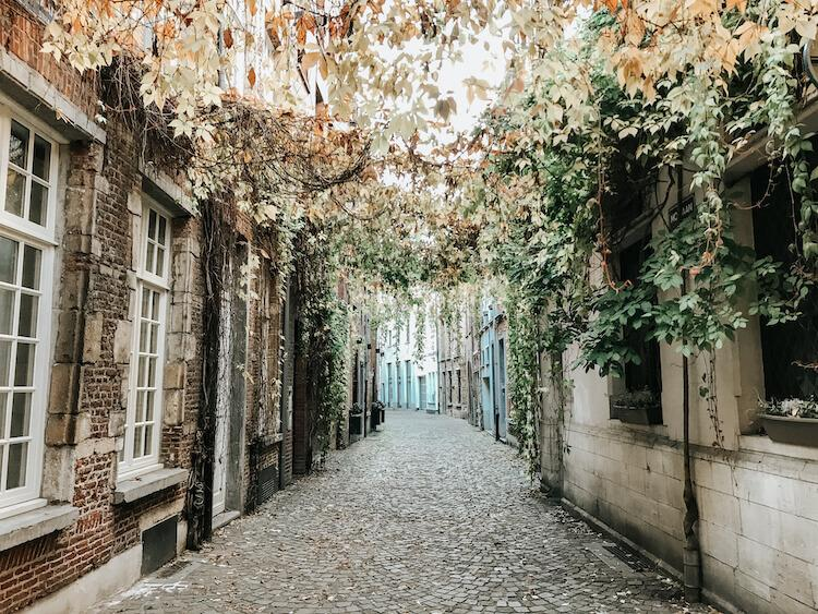 Bright pathway with plants overhead and a cobblestone street in Antwerp- Antwerp in a Day