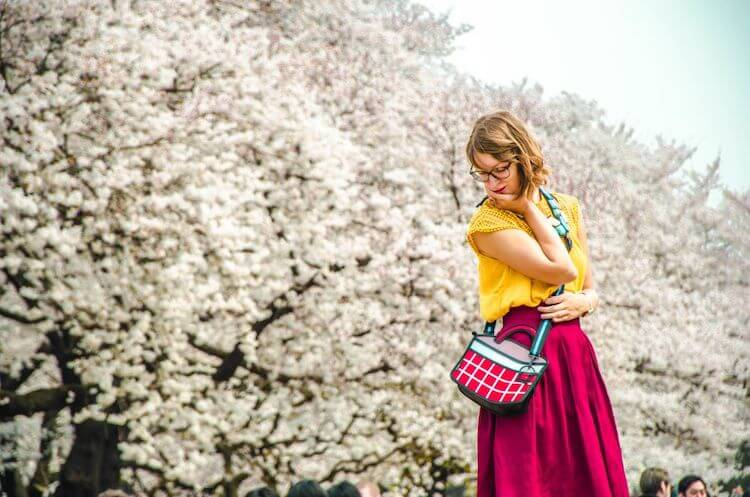 cherry-blossoms-tokyo-travelonthebrain