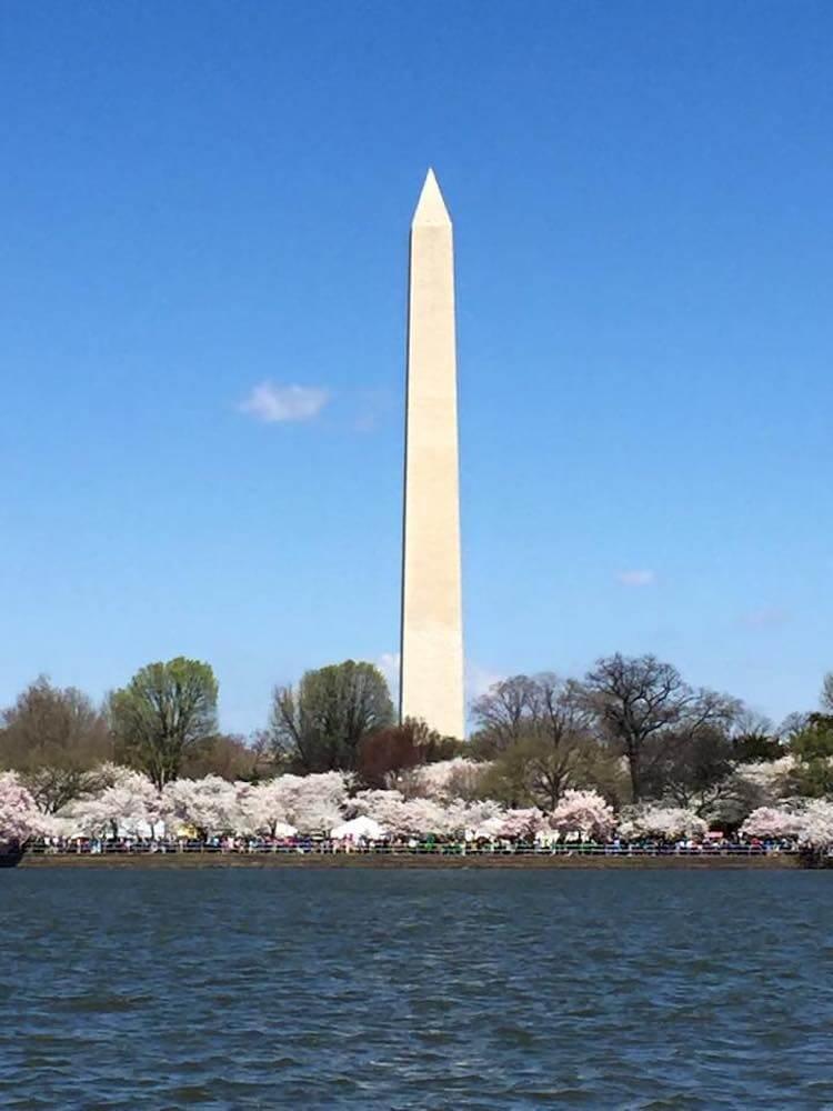 3 Days in Washington, DC- Tidal Basin