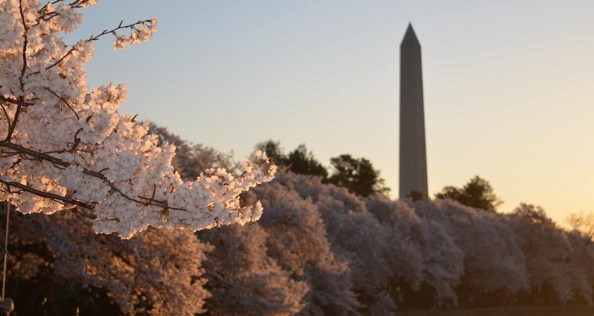 The Perfect 3 Days in Washington, DC Itinerary (With Local Tips!)