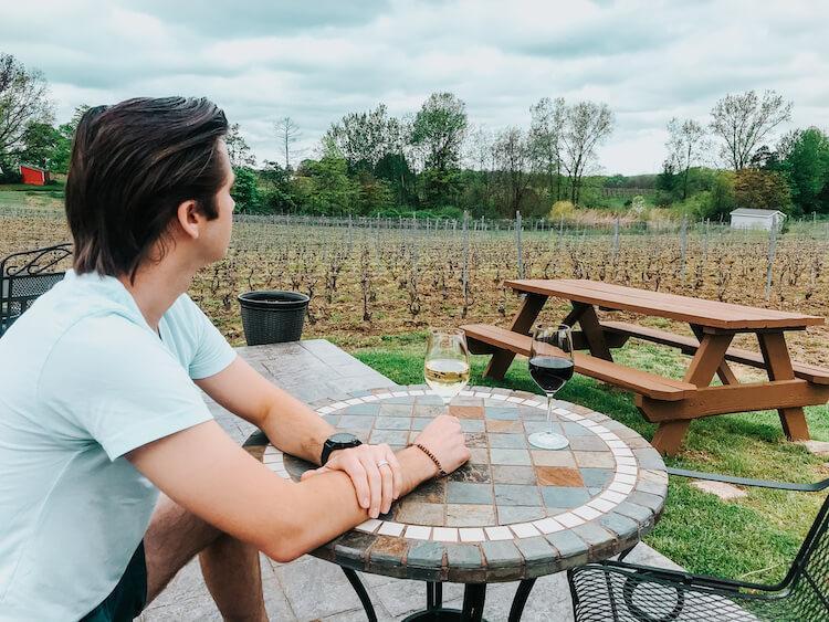 Best Wineries in Geneva, Ohio- Chris viewing the vineyard at M Cellars while drinking wine