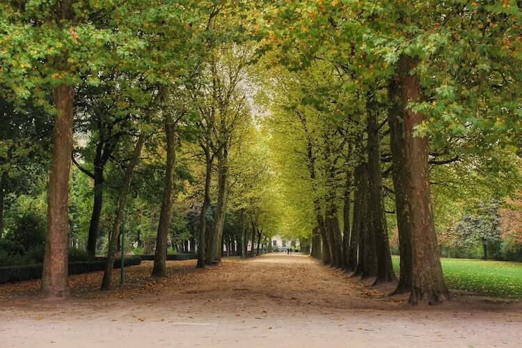 Brussels City Park