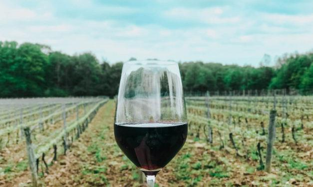Geneva Wineries Ultimate Guide (With Local Tips!)