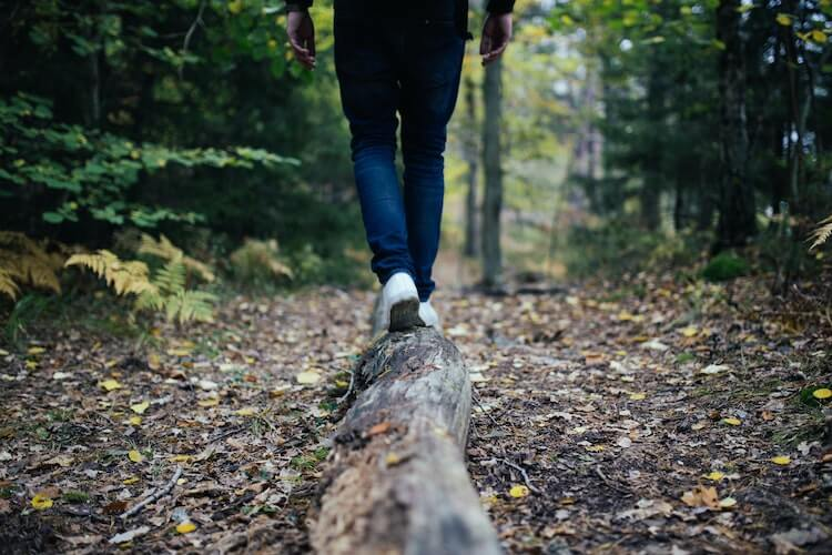 Perfect on a log while hiking in the woods- hiking tips for beginners