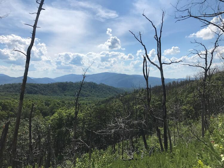Views of the Great Smoky Mountains National Park