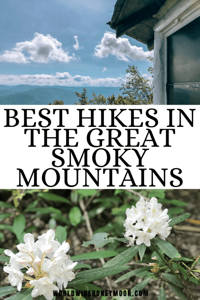 Best Hikes in the Great Smoky Mountains | Top photo is a mountain overlook from Mt Cammerer and the bottom photo is of white wildflowers