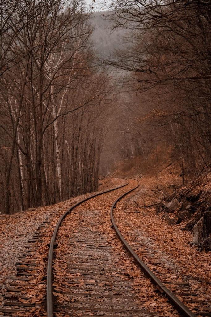 Fall Scenic Railroad