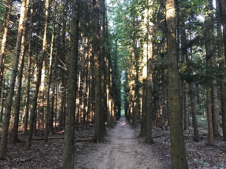 Oak Hill Trail Cuyahoga Valley National Park