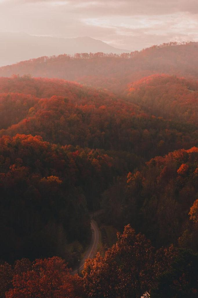 Perfect Fall Scene in the Great Smoky Mountains National Park - Best Time to go to the Smoky Mountains