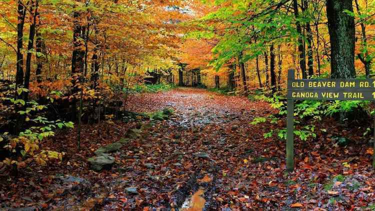 Poconos in the Fall - Best Fall Vacation Spots in the US