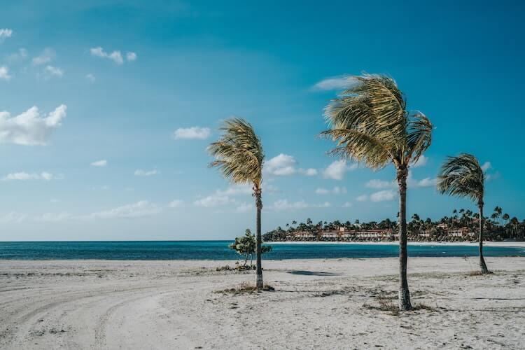 Eagle Beach, Aruba - Best Honeymoon Destinations in December