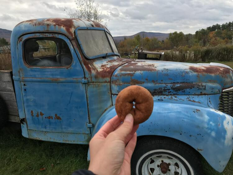 Apple Cider Donuts from Cold Hollow Cider Mill