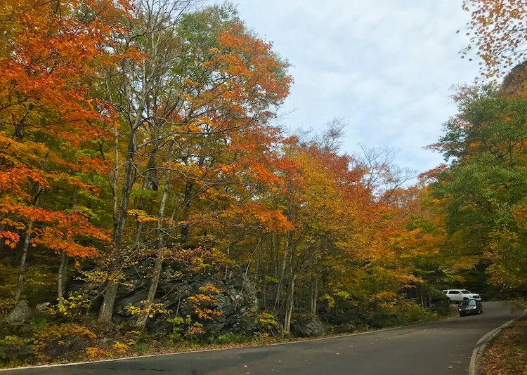 Driving Through Notch Road in Stowe