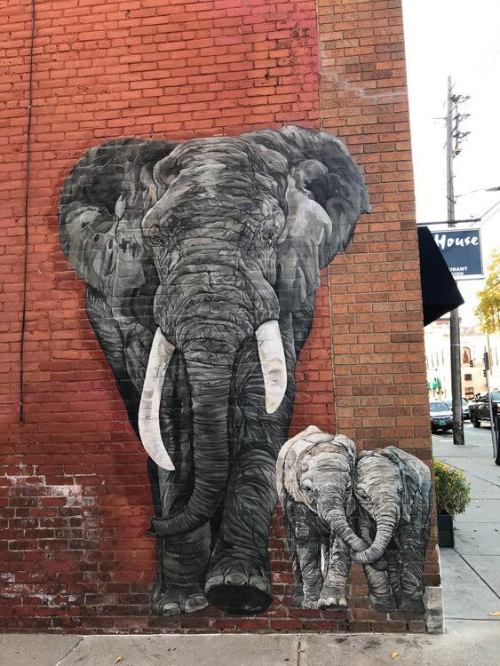 Elephant Mural in Rutland, Vermont