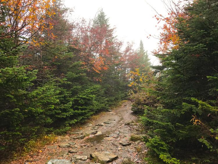 Hiking on the Long Trail