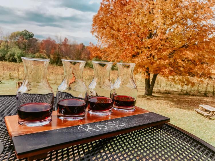 Shelburne Vineyards in the fall