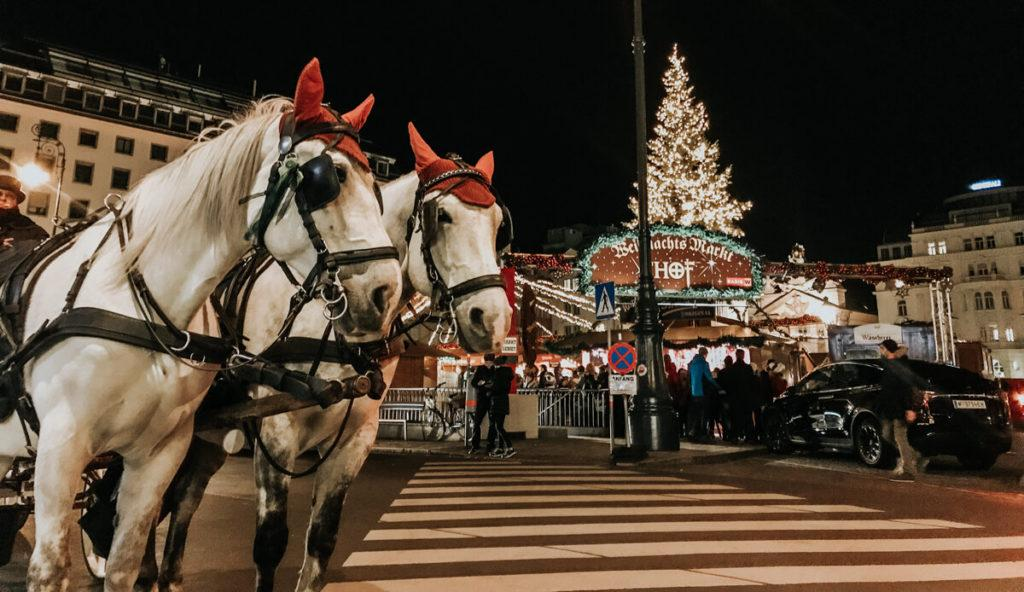 Ultimate Central European Christmas Market Trip Itinerary