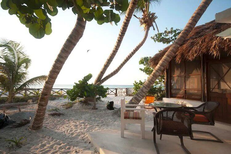 Views overlooking the beach and palm trees in Isla Holbox