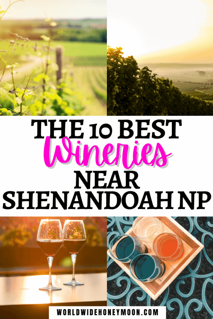 The 10 Best Wineries Near Shenandoah National Park | Photos from top right clockwise include a sunrise over a vineyard, a sampling of 4 wines, 2 wine glasses in front of grape vines, and an up close grape vine in a vineyard