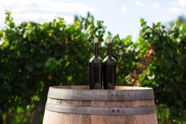 2 wine bottles sitting on top of a barrel in front of a grape vines