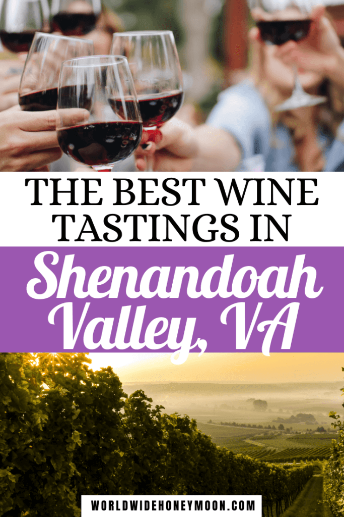 The Best Wine Tastings in Shenandoah Valley VA | Top photos is of people holding red wine glasses about to cheers bottom photos is a misty vineyard in the morning