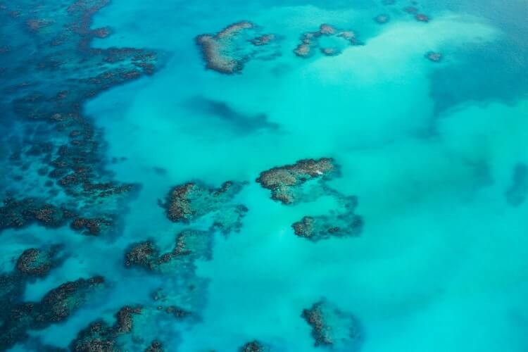 Bird's eye view of the Caribbean with coral reefs