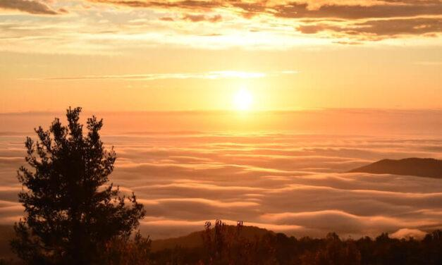 When is the Best Time to Visit Shenandoah National Park?