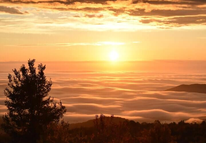 Best Time to Visit Shenandoah National Park   Driving Skyline Drive in the morning and seeing the sunrise over the clouds