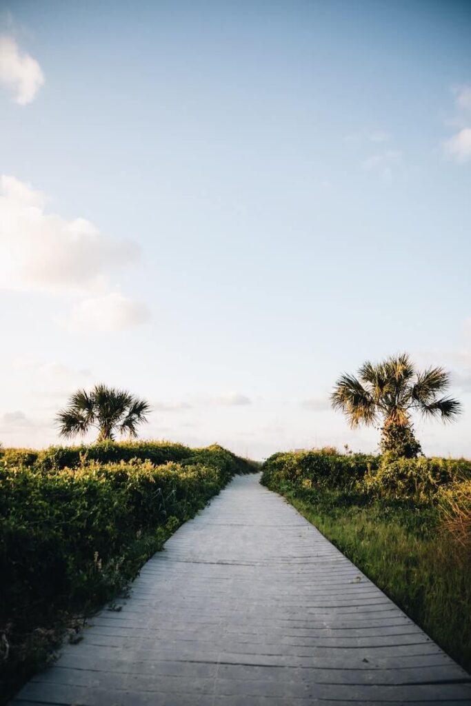Path leading to the beach in Hilton Head, South Carolina