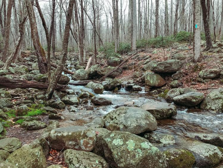 Small creek with many rocks on the way down from Old Rag